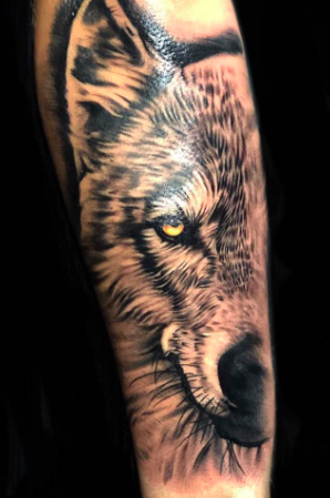 wolf tattoo from harry flashmans tattoos in essex